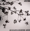 """Xvectors/NOW IS THE WINTER... 12"""""""