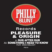 "Pleasure & Origin/DUB AFTER DUB 12"""