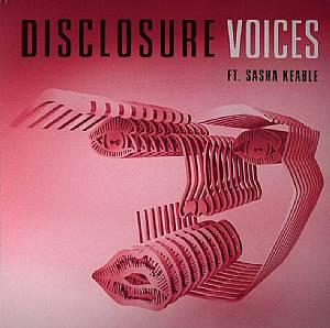 """Disclosure/VOICES 12"""""""