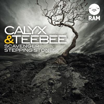 """Calyx & Teebee/SCAVENGER 12"""""""