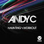 "Andy C/HAUNTING 12"""