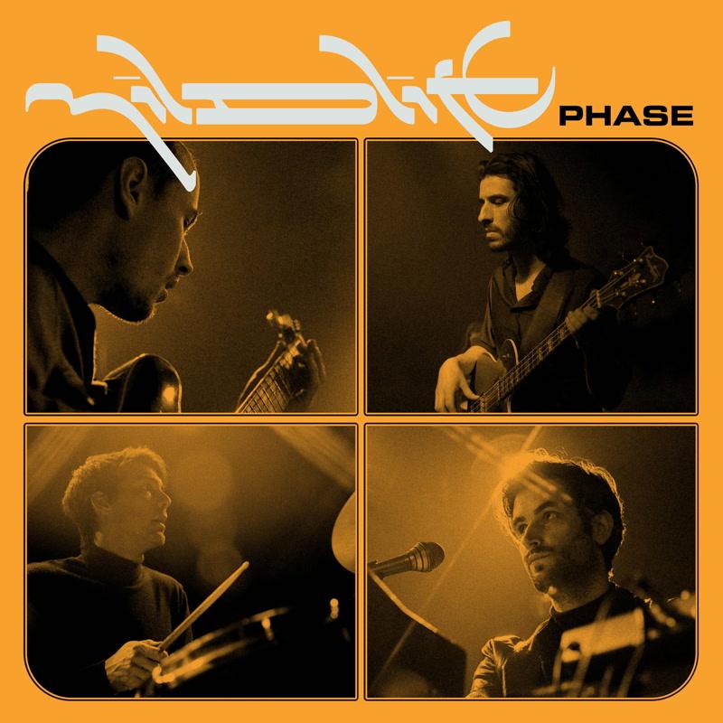 Mildlife/PHASE LP