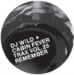 DJ Wild/D!RTY SAMPLER PART 1 12""
