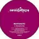 "Fantastic Man/DJ MENTALITY 12"""