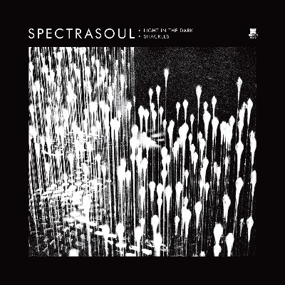 "Spectrasoul/LIGHT IN THE DARK 12"""