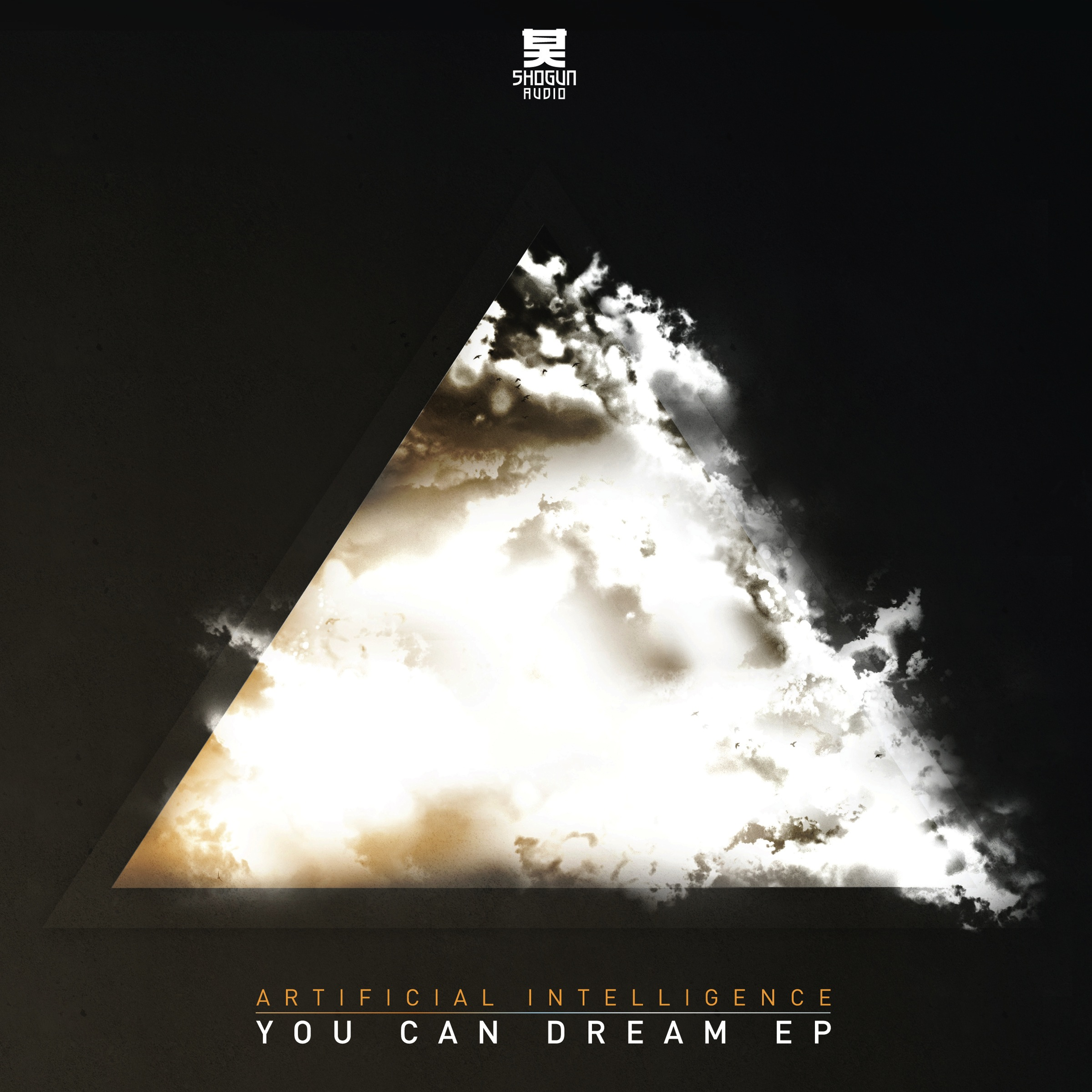 A.I./YOU CAN DREAM EP D12""
