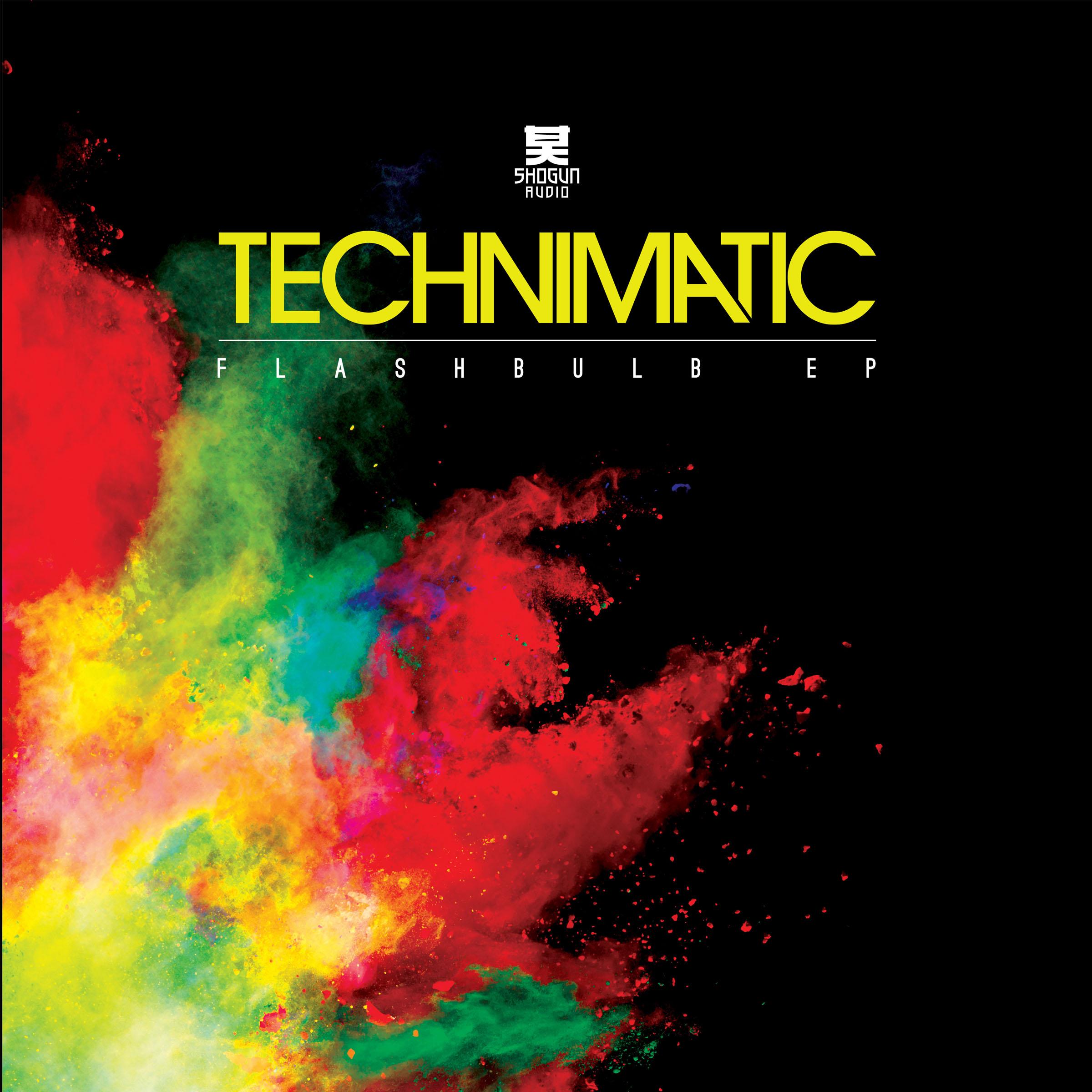 "Technimatic/FLASHBULB EP D12"""