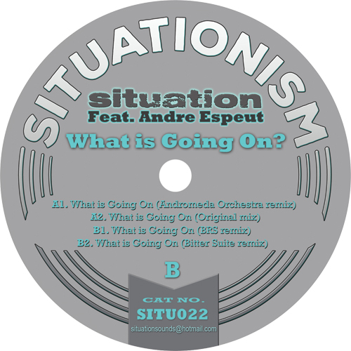 Situation/WHAT IS GOING ON? 12""