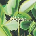 "Ame/MIFUNE & SHIRO  12"""