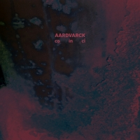 Aardvarck/CO IN CI LP + 10""