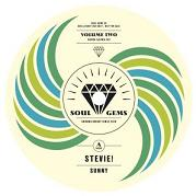 "Stevie Wonder/SUNNY (RE-EDIT) 7"""