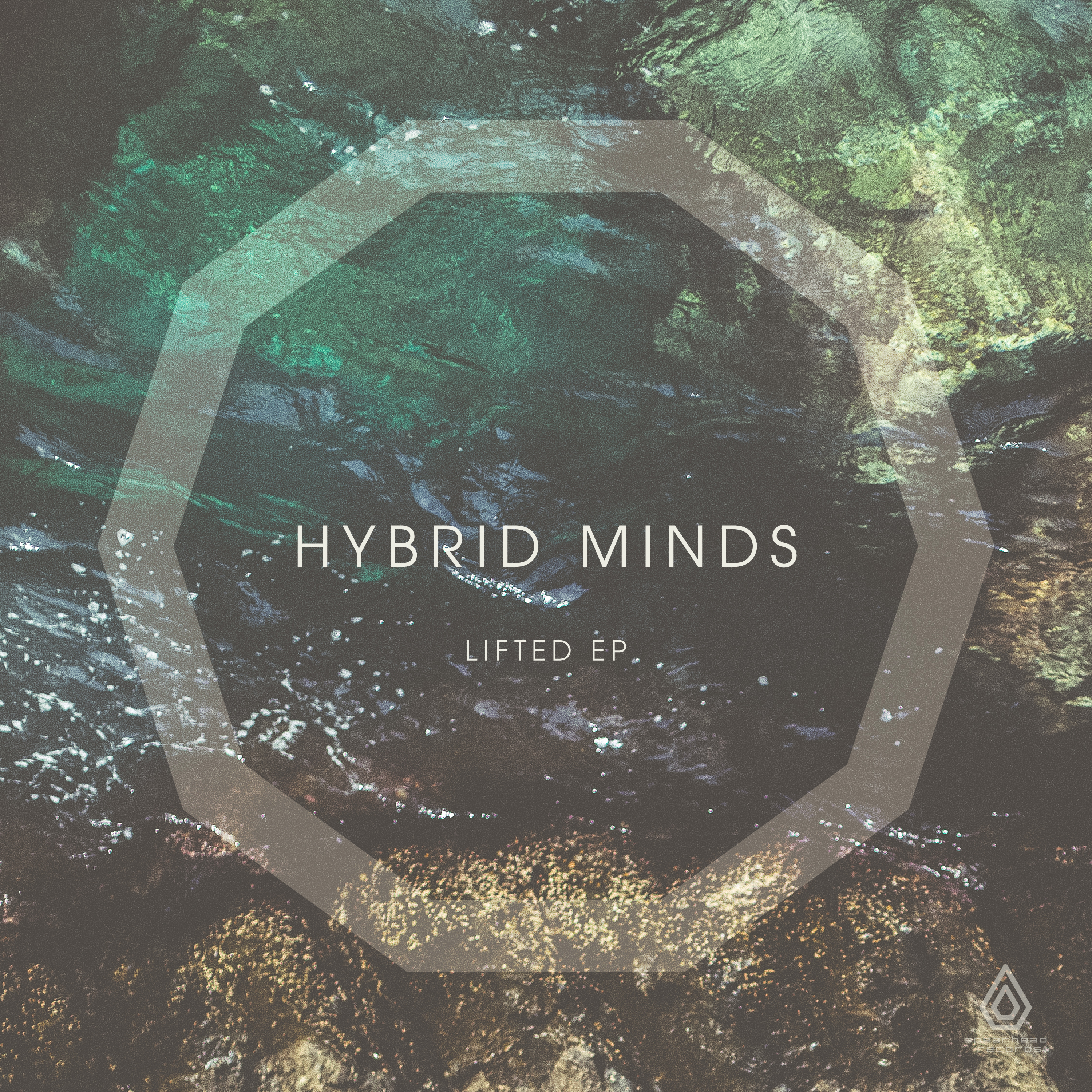 Hybrid Minds/LIFTED EP (PIC DISC) 12""