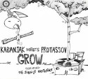 Protassov meets Kabanjak/GROW CD