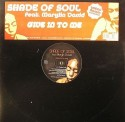 Shade of Soul/GIVE IN TO ME-4 HERO 12""