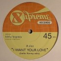 """TangoTerje/I WANT YOUR LOVE 12"""""""
