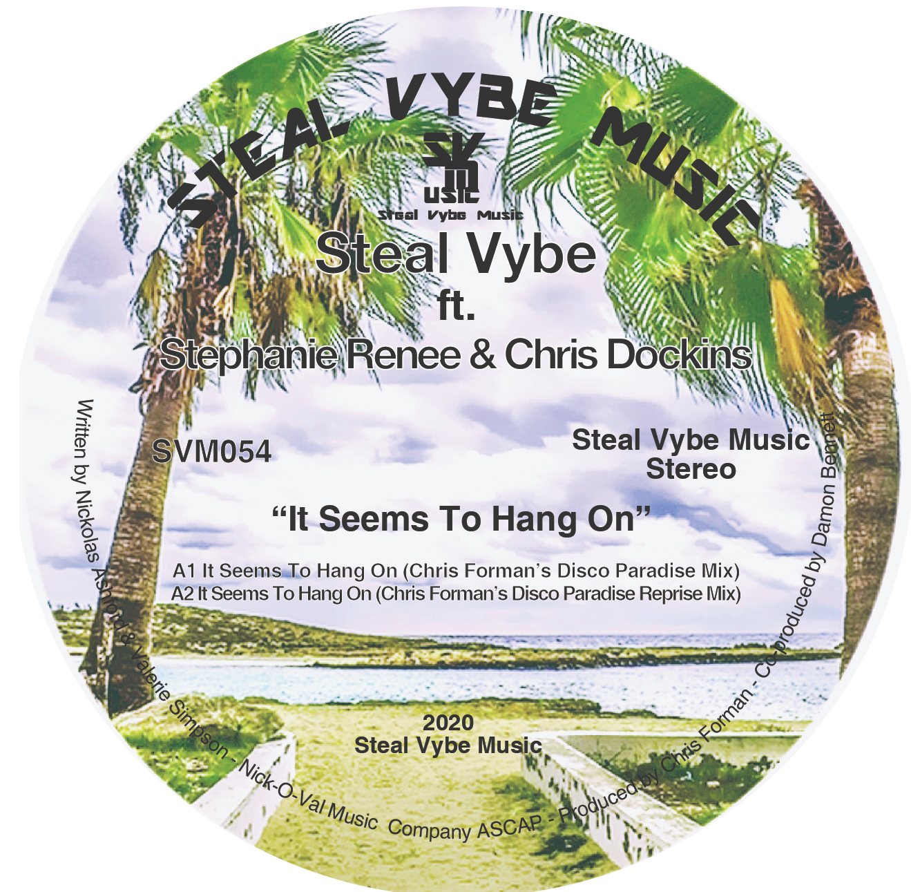 Steal Vybe/IT SEEMS TO HANG ON 12""