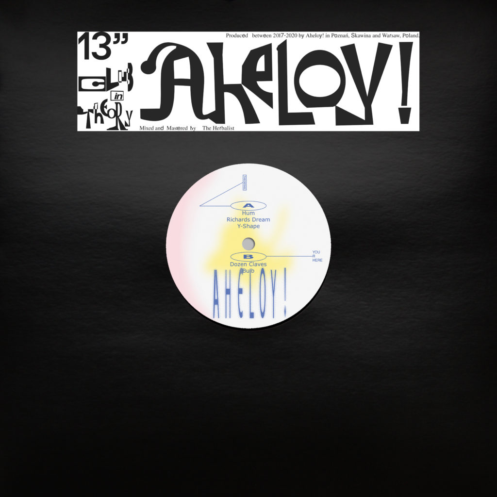 Aheloy!/THEORY002 12""