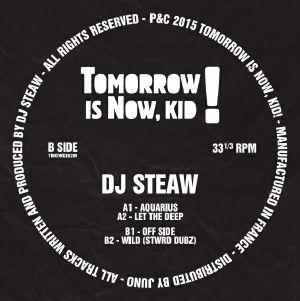 "DJ Steaw/AQUARIUS EP 12"""