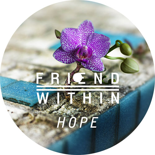 Friend Within/HOPE 12""