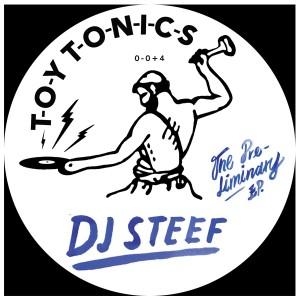 "DJ Steef/THE PRELIMINARY EP 12"""