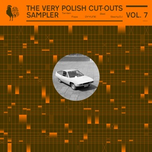 Various/THE VERY POLISH CUT-OUTS V7 12""