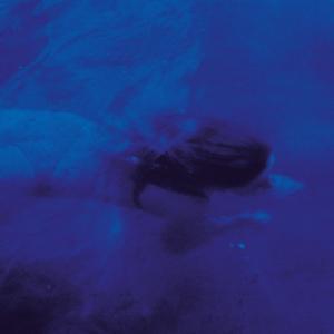 Pejzaz/BLUES LP