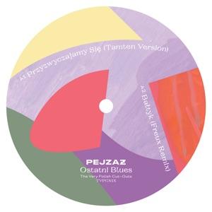 """Pejzaz/OSTATNI BLUES EP 12"""""""