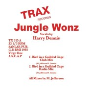 """Jungle Wonz/BIRD IN A GUILDED CAGE 12"""""""