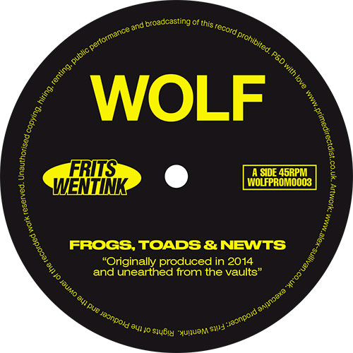 Frits Wentink/FROGS.. (1-SIDED) -RSD 12""