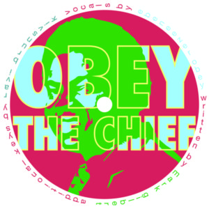 """Stupid Human/OBEY THE CHIEF 12"""""""